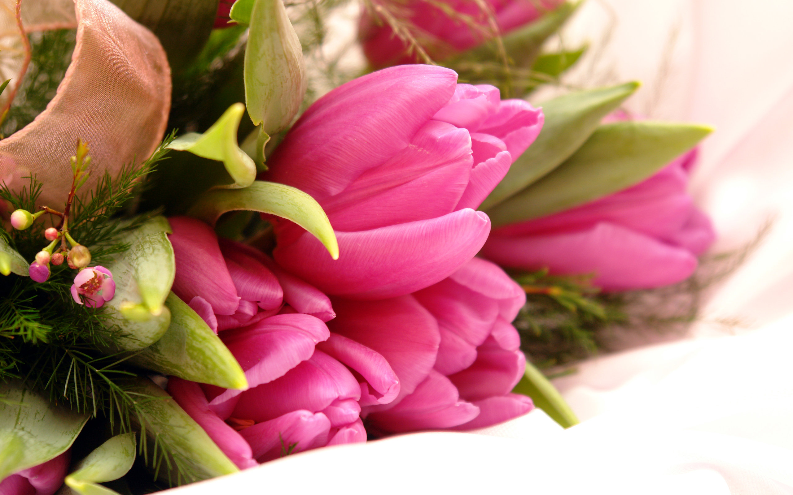 pink flowers download 19 background wallpaper